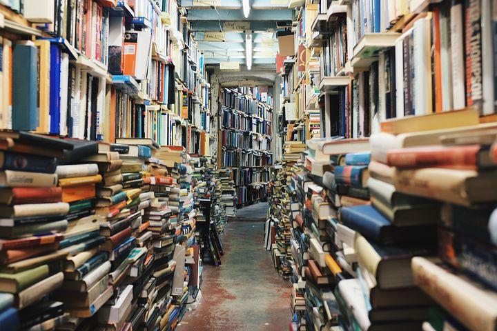 Books fonte: https://pixabay.com/it/libri-biblioteca-educazione-768426/