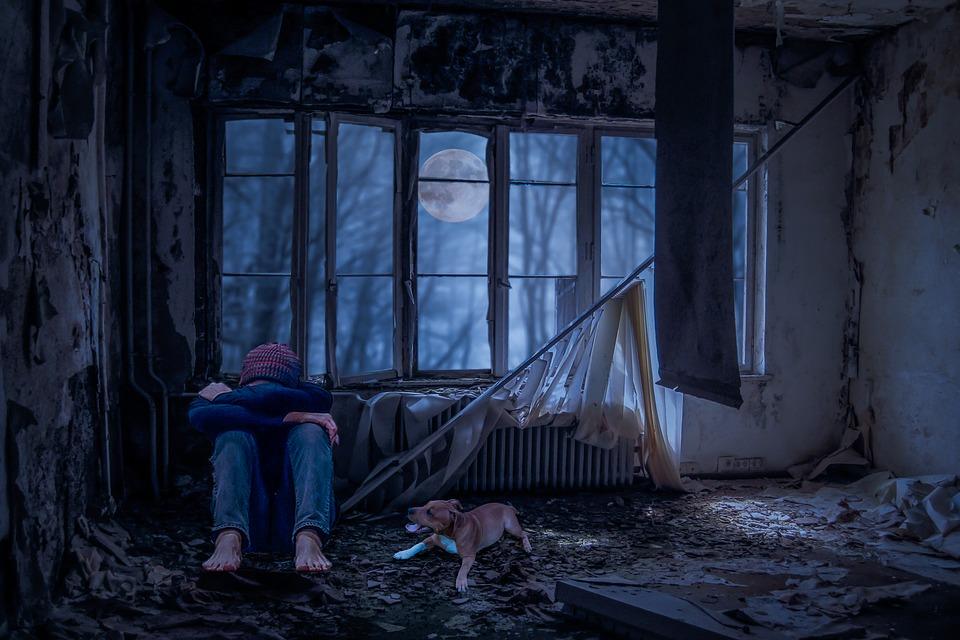 https://pixabay.com/it/photos/giovani-da-solo-triste-cane-camera-2770146/